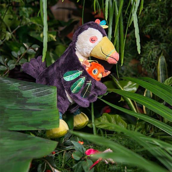dans la jungle toucan cover image